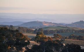 Картинка деревья, закат, холмы, вечер, Australia, Victoria, Near Beechworth