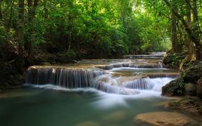 Картинка зелень, лес, деревья, река, водопады