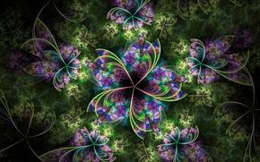 Картинка цветок, листья, свет, узор, лепестки