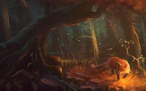 Картинка лес, взгляд, деревья, елка, арт, лиса, береза, зверь