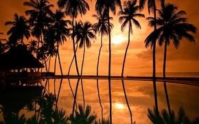 Картинка небо, солнце, закат, пальмы, вечер, домик, бунгало, гаваи, курорты