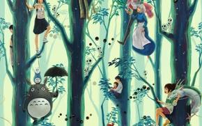 Картинка аниме, Anime, Хаяо Миядзаки, тоторо, принцесса Мононоке