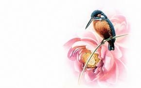 Картинка птица, минимализм, Восток, мастер, арт, лотос, живопись