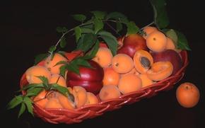 Картинка фрукты, абрикос, нектарин