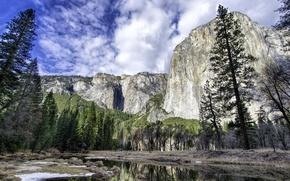 Картинка лес, деревья, горы, река, Калифорния, США, Yosemite National Park