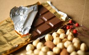Обои food, десерт, dessert, сладкое, chocolate, nuts, орехи, sweet, еда, шоколад, 1920x1200