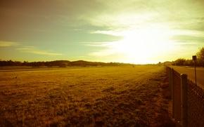 Картинка дорога, зелень, небо, трава, листья, солнце, лучи, деревья, пейзаж, природа, фон, сетка, green, widescreen, обои, ...
