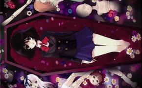 Картинка цветы, куклы, форма, гроб, бант, иная, misaki mei, another, марионетки, by noizi ito