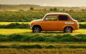 Картинка природа, ретро, ссср, травка, автомобиль, запорожец, Заз