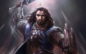 Картинка оружие, воин, властелин колец, арт, щит, гном, lord of the rings, Thorin