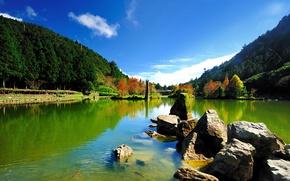 Картинка небо, деревья, рыбы, озеро, пруд, камни, холмы, мох, солнечно