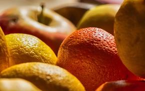 Картинка макро, еда, фрукты