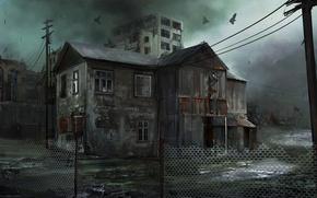 Картинка птицы, мрак, забор, дома, заброшенные