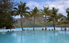 Обои пальмы, прибрежье, бассейн, облака