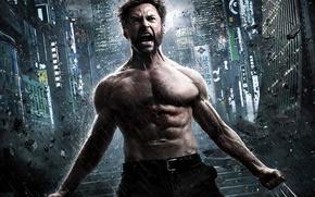 Обои Wolverine, Hugh Jackman, Logan, Хью Джекман, The Wolverine, Росомаха: Бессмертный