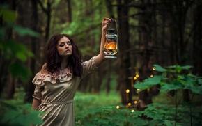 Обои деревья, кусты, одна, в лесу, прическа, брюнетка, вечер, девушка, фонарь, платье