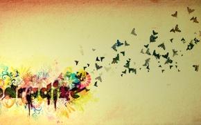Обои цветок, рай, бабочка