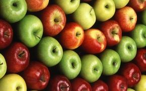 Обои яблоки, фрукты, продукты питания