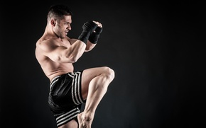 Картинка gloves, kickboxer, sportsman