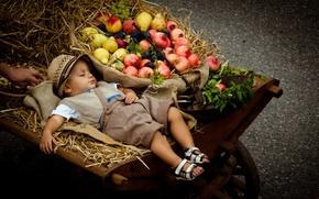 Картинка мальчик, коляска, фрукты