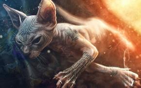 Картинка кошка, кот, рисунок, фотошоп, стилизация, сигарета, порода, сфинкс, Max Twain, фото тату