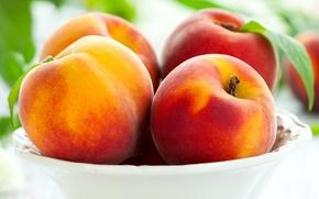 Обои персики, peaches, фрукты, тарелка