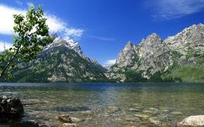 Картинка природа, река, USA, Wyoming, National Park, Jenny Lake, Grand Teton