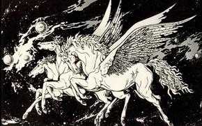 Картинка Black and White, Pegasus, Space Fantasy, Photos