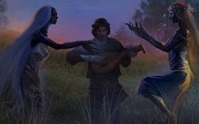 Обои Алина, полуденица, полуночница, Глава IV, Селина, The Witcher Adventure Game, Ведьмак, Поле, Лютик