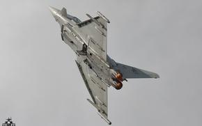 Картинка оружие, Italian Air Force, Eurofighter F-2000A Typhoon