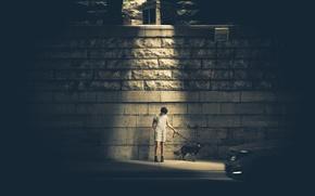 Картинка light, girl, wall, woman, dog, glow, street, halo, female, canine