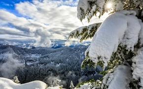 Обои облака, Okanogan-Wenatchee National Forest, Cascade Range, Каскадные горы, лес, Национальный заповедник Уэнатчи, штат Вашингтон, панорама, ...