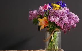 Обои цветы, банка, сирень, фон