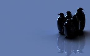 Обои птицы, фигуры, пингвины
