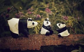 Картинка цветы, ветка, панда, оригами, панда семьи