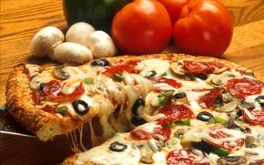 Обои грибы, еда, сыр, пища, пицца, помидоры, оливки, pizza, вкусно, маслины, mushrooms, tomatoes, cheese