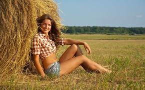 Картинка поле, лето, девушка, природа, сено