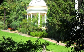 Картинка лето, природа, парк, Деревья, Сочи