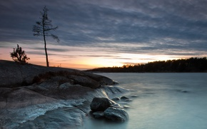 Картинка пейзаж, ночь, природа, озеро, камни, дерево