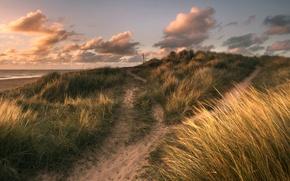Картинка песок, море, трава, облака, берег, обработка, Winterton Light