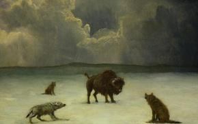 Обои животные, волк, картина, бизон, Аля Бирштадт, В Западне