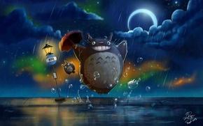 Картинка ночь, дождь, зонт, дорожный знак, Totoro, My Neighbor Totoro, полумесяц