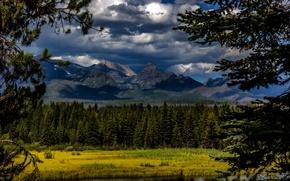 Картинка лес, облака, деревья, горы, река, Канада, Glacier National Park, Montana