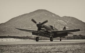 Картинка истребитель, аэродром, P-40, Warhawk