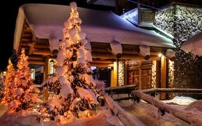 Картинка ель, снег, природа, зима, город, дом, ночь, Финляндия, фото, Lapland
