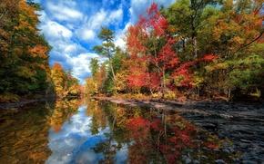 Картинка осень, лес, небо, вода, облака, деревья, пейзаж, озеро, отражение