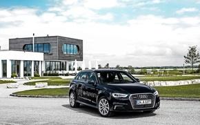 Картинка Audi, ауди, Sportback