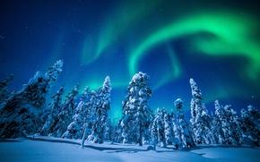 Картинка зима, небо, снег, деревья, северное сияние, Финляндия, Finland, Lapland, Лапландия