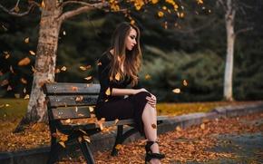Картинка осень, девушка, парк, листопад, скамья