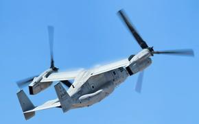 Обои авиация, самолёт, Osprey V 22